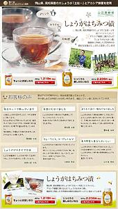 山田養蜂場|土佐一とアカシア蜂蜜を使用「しょうがはちみつ漬」_1254793252763|ランディングページ